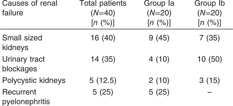 Table 1 Causes Of Chronic Renal Failure In Group I 40 Patients With Kidney
